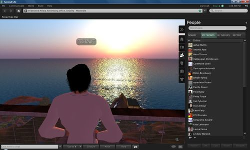 The view from Second Life 2