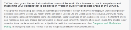 Second Life Machinima and Snapshot license