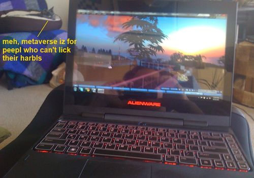Alienware Running Second Life