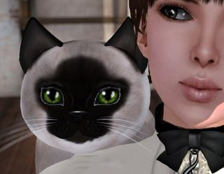 Iris and Second Life virtual cat
