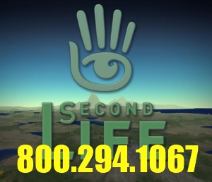 Second Life toll free support