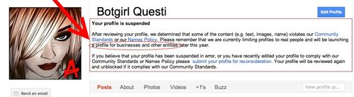 Botgirl Questi Google Profile Suspended