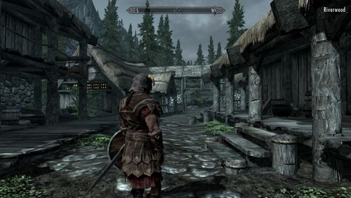 Skyrim graphics quality