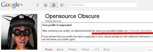 Google Profile pseudonym name suspended