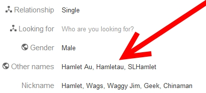Google Profile Other Name Field
