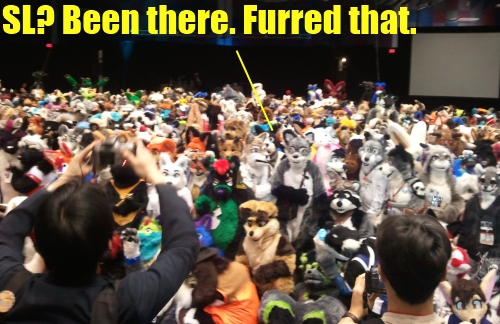 Furrycon furries
