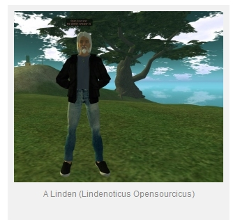 Linden Lab staffer field guide