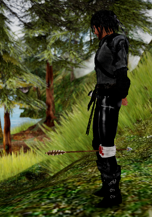 SL mesh arrow