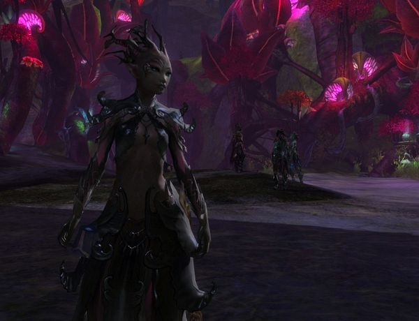 New World Notes: Guild Wars 2's Sylvari Race is a Pleasant