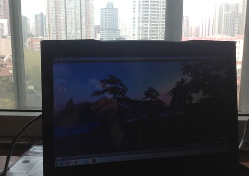 Second Life from China