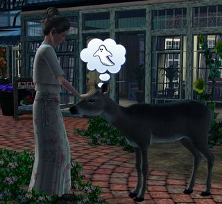 Isobel pets deer