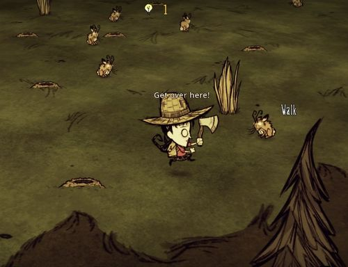 Don't Starve Chase