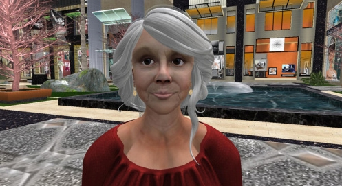 Second Life demographic survey
