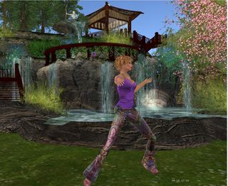 Tai Chi avatar mediation in Second Life
