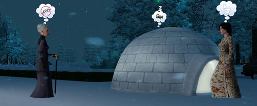 Igloo woohoo 3