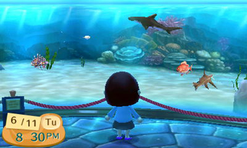 Aquarium New Leaf /></a></p>