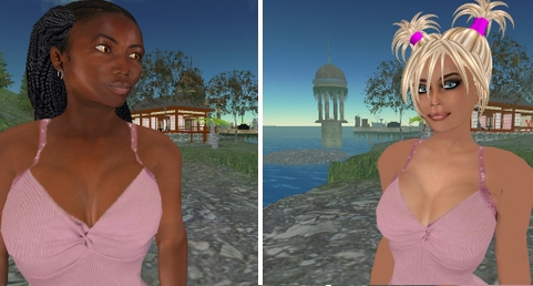 Second Life academic studies on race