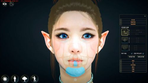 Black Desert CBT2 Customization