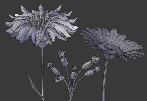 Maylee Oh Low Poly Flowers