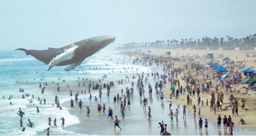 Virtual REality Magic leap