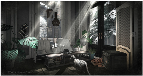 SL Interior phtography Cajsa New World Notes