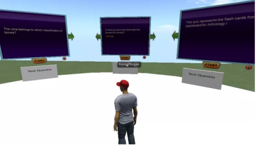 Second Life Education fail