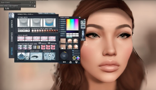 New World Notes: Creative User Hacks to Second Life Appearance Make