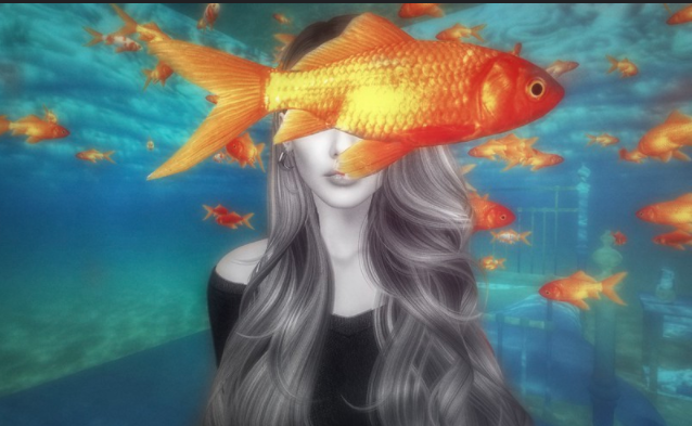 Angelika Corral One fish SL Flickr